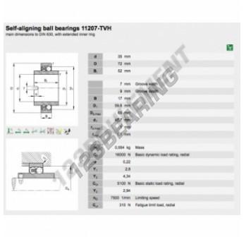11207-TVH-FAG