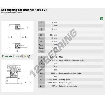1306-TVH-FAG