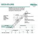 DGE25-ES-2RS-DURBAL